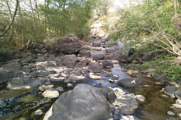 Foto de terreno habitacional en venta en domicilio conocido 0, matlahuacales de aquiles serdán, chignahuapan, puebla, 10004456 No. 31