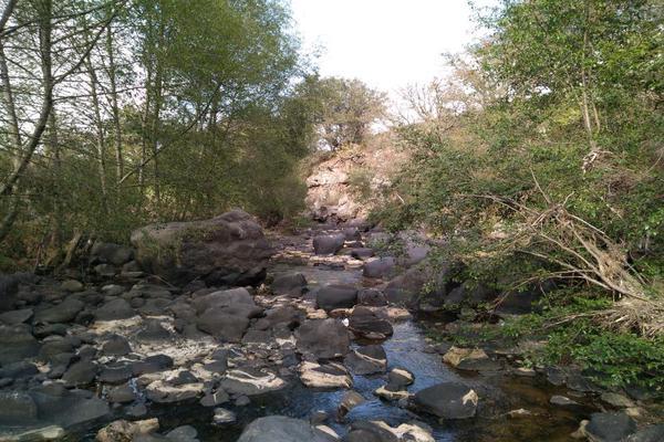 Foto de terreno habitacional en venta en domicilio conocido 0, matlahuacales de aquiles serdán, chignahuapan, puebla, 10004456 No. 32