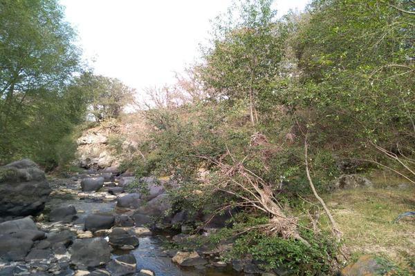 Foto de terreno habitacional en venta en domicilio conocido 0, matlahuacales de aquiles serdán, chignahuapan, puebla, 10004456 No. 36