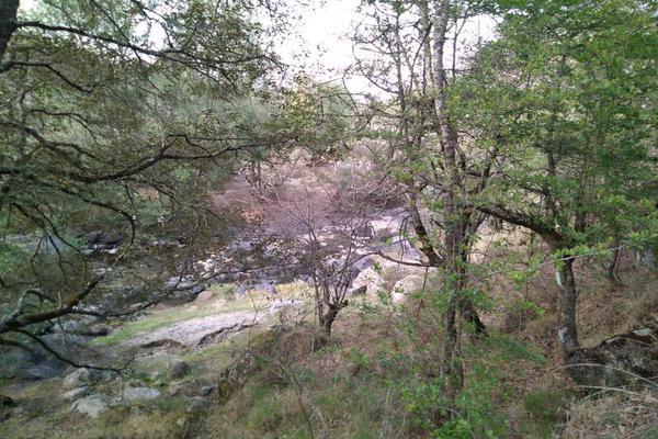 Foto de terreno habitacional en venta en domicilio conocido 0, matlahuacales de aquiles serdán, chignahuapan, puebla, 10004456 No. 37