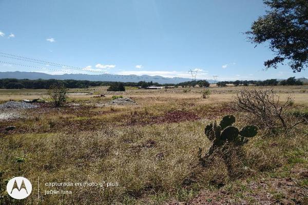 Foto de terreno habitacional en venta en domicilio conocido 0, san miguel lastiri, chignahuapan, puebla, 9916984 No. 02