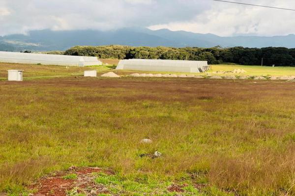 Foto de terreno habitacional en venta en domicilio conocido 0, san miguel lastiri, chignahuapan, puebla, 9916984 No. 03