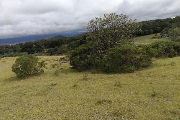 Foto de terreno habitacional en venta en domicilio conocido 0, san miguel lastiri, chignahuapan, puebla, 9945169 No. 05