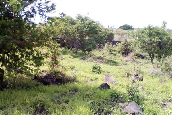 Foto de terreno habitacional en venta en domicilio conocido , oaxtepec centro, yautepec, morelos, 14029284 No. 02