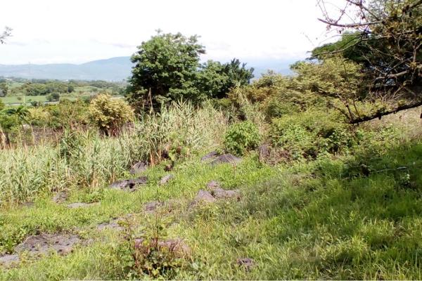 Foto de terreno habitacional en venta en domicilio conocido , oaxtepec centro, yautepec, morelos, 14029284 No. 03