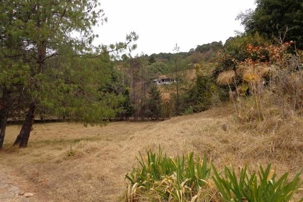 Foto de terreno habitacional en venta en domicilio conocido rancho los perales , valle de bravo, valle de bravo, méxico, 4633592 No. 05