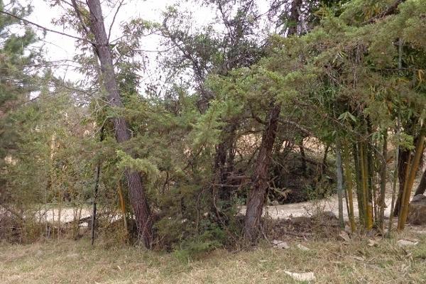 Foto de terreno habitacional en venta en domicilio conocido rancho los perales , valle de bravo, valle de bravo, méxico, 4633592 No. 06