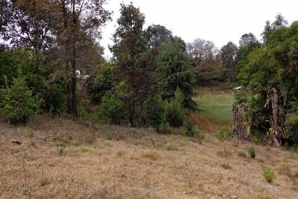 Foto de terreno habitacional en venta en domicilio conocido rancho los perales , valle de bravo, valle de bravo, méxico, 4633592 No. 08