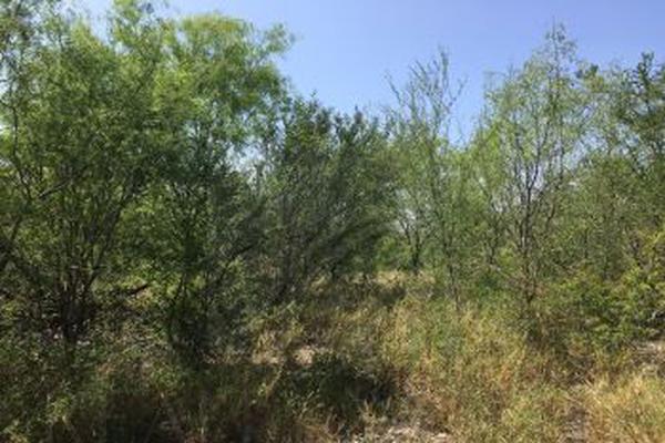 Foto de terreno habitacional en venta en  , dr. gonzalez, doctor gonzález, nuevo león, 5300852 No. 10