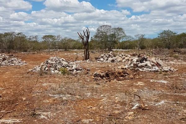 Foto de terreno habitacional en venta en  , dzemul, dzemul, yucatán, 14028548 No. 04
