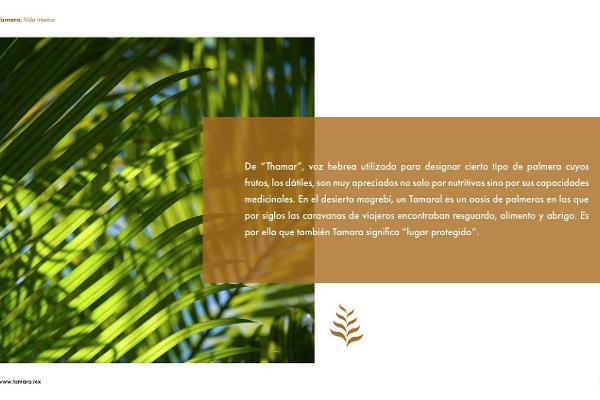 Foto de casa en venta en  , dzibilchaltún, mérida, yucatán, 5683595 No. 11