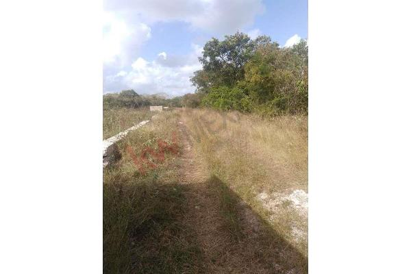 Foto de terreno habitacional en venta en  , dzitya, mérida, yucatán, 11438844 No. 04