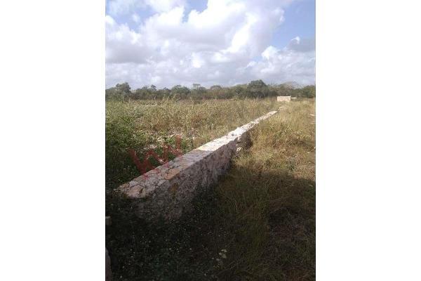 Foto de terreno habitacional en venta en  , dzitya, mérida, yucatán, 11438844 No. 06