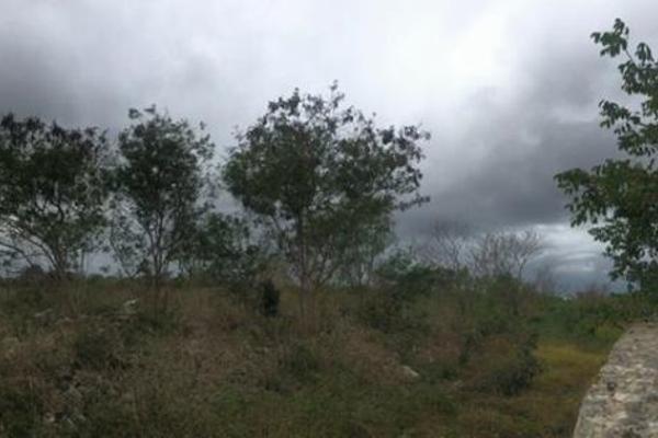 Foto de terreno habitacional en venta en  , dzitya, mérida, yucatán, 14028536 No. 02