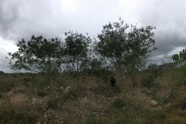 Foto de terreno habitacional en venta en  , dzitya, mérida, yucatán, 14028536 No. 03