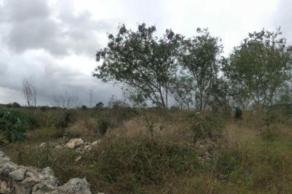 Foto de terreno habitacional en venta en  , dzitya, mérida, yucatán, 14028536 No. 04