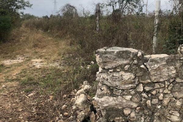 Foto de terreno habitacional en venta en  , dzitya, mérida, yucatán, 14028536 No. 07