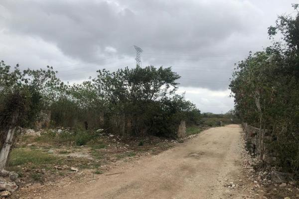 Foto de terreno habitacional en venta en  , dzitya, mérida, yucatán, 14028536 No. 08