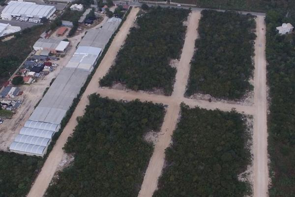 Foto de terreno habitacional en venta en  , dzitya, mérida, yucatán, 5664363 No. 06