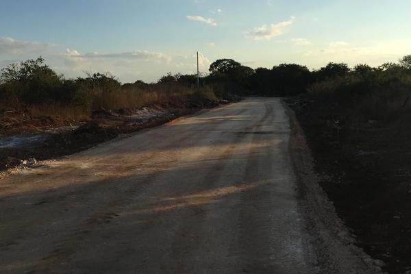 Foto de terreno habitacional en venta en  , dzitya, mérida, yucatán, 5684830 No. 05