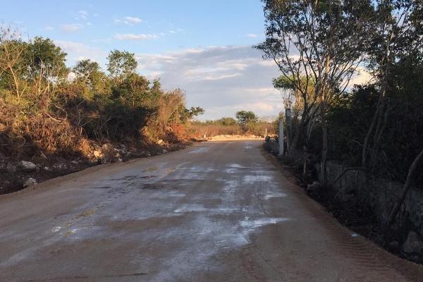 Foto de terreno habitacional en venta en  , dzitya, mérida, yucatán, 5684830 No. 06