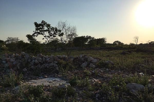 Foto de terreno habitacional en venta en  , dzitya, mérida, yucatán, 5695578 No. 01