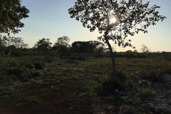 Foto de terreno habitacional en venta en  , dzitya, mérida, yucatán, 5695578 No. 02