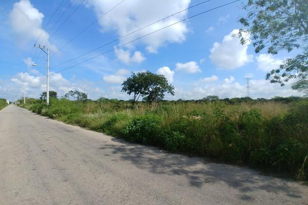 Foto de terreno habitacional en venta en  , dzitya, mérida, yucatán, 5911201 No. 06