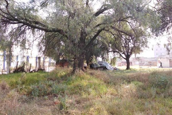 Foto de terreno habitacional en venta en  , ecatepec centro, ecatepec de morelos, m?xico, 2725681 No. 12