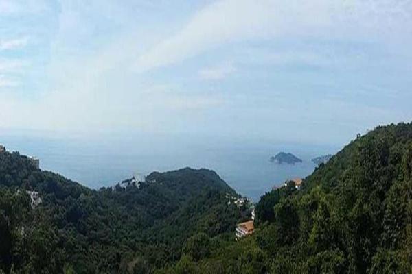 Foto de terreno habitacional en venta en editar 0, la cima, acapulco de juárez, guerrero, 8874440 No. 13