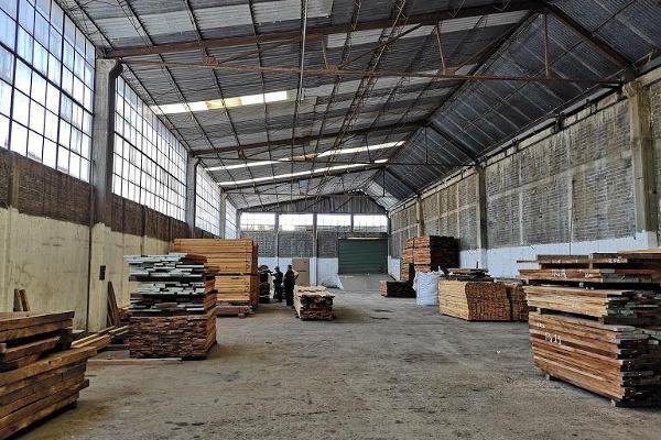 Foto de nave industrial en renta en  , ejidal el pino, la paz, méxico, 12263801 No. 02