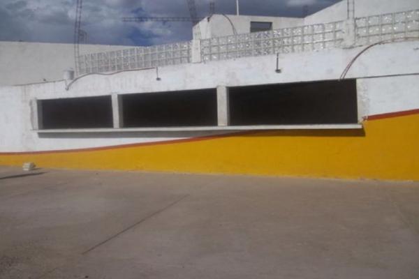 Foto de nave industrial en venta en  , ejidal, gómez palacio, durango, 3477380 No. 02