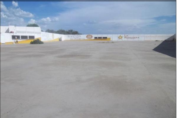 Foto de nave industrial en venta en  , ejidal, gómez palacio, durango, 3477380 No. 04