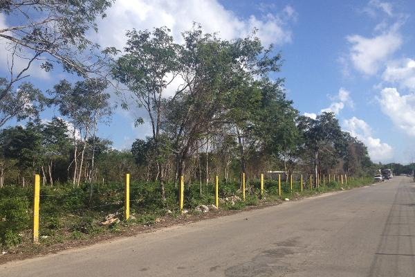 Foto de terreno habitacional en venta en  , ejidal, solidaridad, quintana roo, 2625373 No. 05