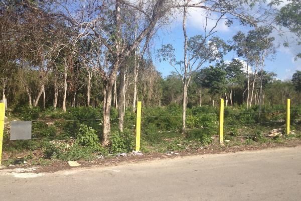 Foto de terreno habitacional en venta en  , ejidal, solidaridad, quintana roo, 2625373 No. 06
