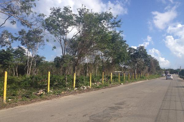 Foto de terreno habitacional en venta en  , ejidal, solidaridad, quintana roo, 2625373 No. 07