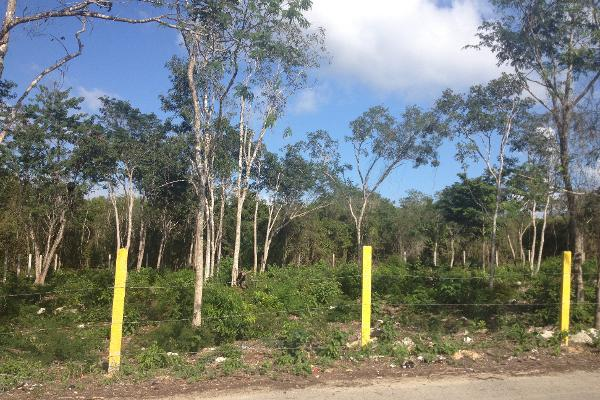 Foto de terreno habitacional en venta en  , ejidal, solidaridad, quintana roo, 2625373 No. 08