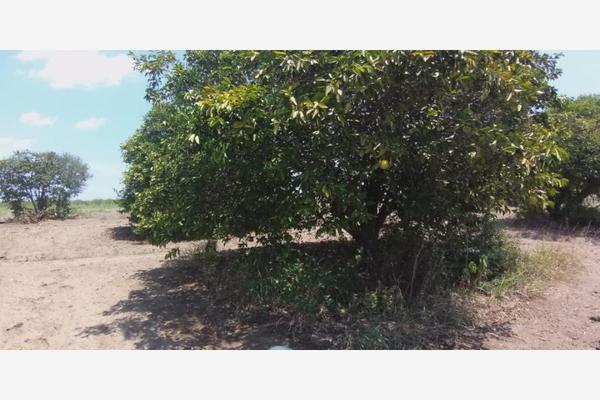 Foto de terreno comercial en venta en ejido 000, la unión 2, montemorelos, nuevo león, 8840848 No. 01