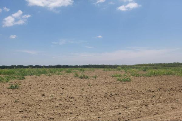 Foto de terreno comercial en venta en ejido 000, la unión 2, montemorelos, nuevo león, 8840848 No. 03