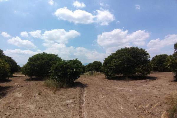 Foto de terreno comercial en venta en ejido 000, la unión 2, montemorelos, nuevo león, 8840848 No. 06