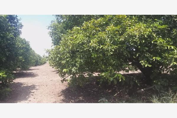 Foto de terreno comercial en venta en ejido 000, la unión 2, montemorelos, nuevo león, 8840848 No. 09