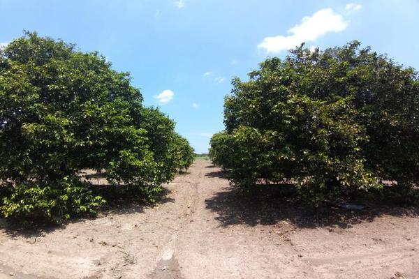 Foto de terreno comercial en venta en ejido 000, la unión 2, montemorelos, nuevo león, 8840848 No. 11