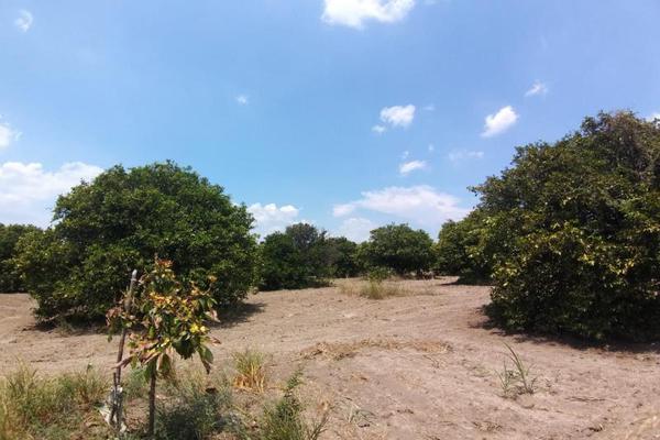 Foto de terreno comercial en venta en ejido 000, la unión 2, montemorelos, nuevo león, 8840848 No. 14