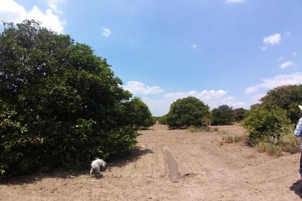 Foto de terreno comercial en venta en ejido 000, la unión 2, montemorelos, nuevo león, 8840848 No. 15