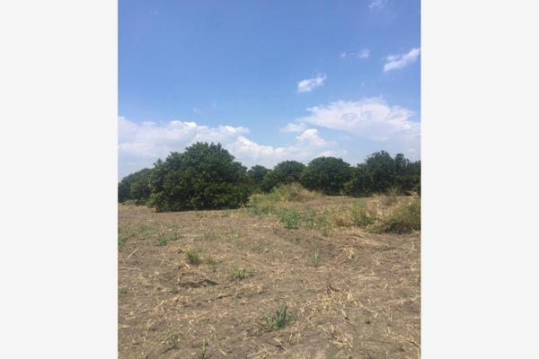 Foto de terreno comercial en venta en ejido 000, la unión 2, montemorelos, nuevo león, 8840848 No. 18