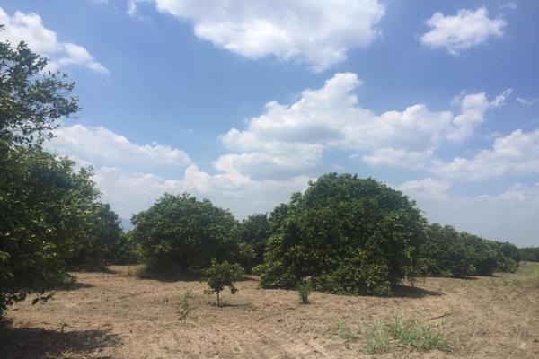 Foto de terreno comercial en venta en ejido 000, la unión 2, montemorelos, nuevo león, 8840848 No. 20
