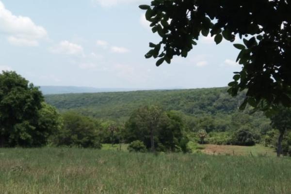 Foto de terreno habitacional en venta en ejido gustavo garmendia , gustavo armendia, ciudad valles, san luis potosí, 16289515 No. 01