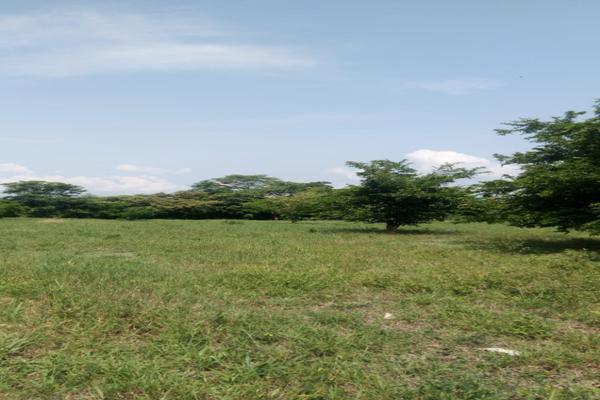 Foto de terreno habitacional en venta en ejido gustavo garmendia , gustavo armendia, ciudad valles, san luis potosí, 16289515 No. 02