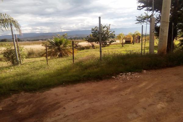 Foto de terreno habitacional en venta en ejido las tareas s/n , la soledad, san lorenzo cacaotepec, oaxaca, 8321529 No. 02