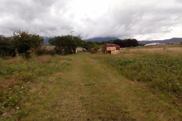 Foto de terreno habitacional en venta en ejido las tareas s/n , la soledad, san lorenzo cacaotepec, oaxaca, 8321529 No. 03